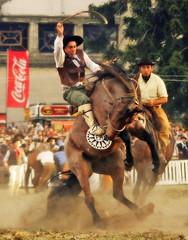 En La Rural del Prado... (Eduardo Amorim) Tags: horses horse southamerica caballo uruguay cheval caballos cavalos prado montevideo pferde cavalli cavallo cavalo gauchos pferd hest hevonen chevaux gaucho  amricadosul montevidu hst uruguai gacho  amriquedusud  gachos  sudamrica suramrica amricadelsur  sdamerika jineteada   americadelsud gineteada  americameridionale semanacriolla semanacriolladelprado eduardoamorim iayayam yamaiay semanacriolladelprado2010