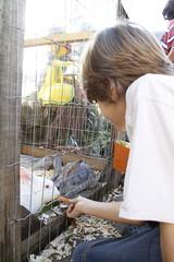 _MG_1143_Crédito Cleiton Thiele/SerraPress (Chocofest Páscoa em Gramado) Tags: kids chocofest garotada