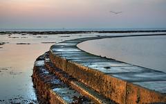Old Bathing Pool (jannimac1) Tags: sunset sea seaweed dusk walls lowtide curve birchington minnisbay bathingpool