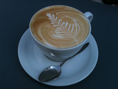 Kooka Boora: Latte