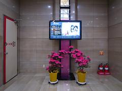 seoul cards | elevators lobby (seoulrider) Tags: fire tv elevator korea lobby seoul jongno ricoh  gr3 motoelastico metropolitaninterior seoulrider