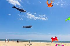 ocean vacation beach sand kites oceancity kitefestival oceancitymd canonefs1585mmf3556isusm