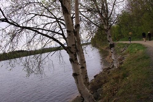 Umeå weekend 050