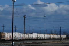 Sniff Sniff (All Seeing) Tags: up flat unionpacific reefer flatpanel uprr armn reefers buildingamerica babyridge
