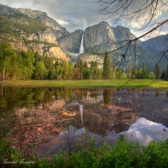 Yosemite falls [Explore #1] (Fereshte Faustini) Tags: mountain reflection nature photography waterfall yosemite naturephotography oracoop fereshtefaustini picturesbyfereshtefaustini fereshtefaustinisphoto aboveandbeyondlevel1 aboveandbeyondlevel2 aboveandbeyondlevel3