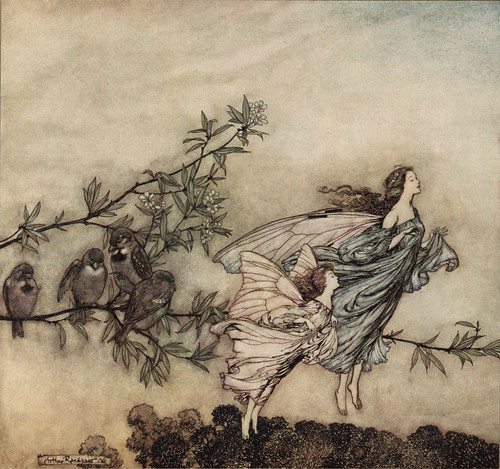 Peter Pan - The fairies have their tiffs with the birds.12