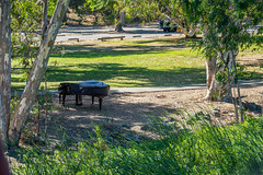 Piano in the park (randyherring) Tags: ca california vasonalakecountypark nature losgatos afternoon piano park lake recreational outdoor santaclaracountyparks unitedstates us