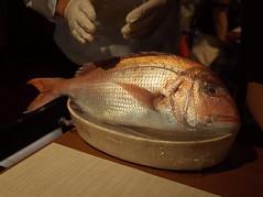 D'oro  (Hatsudai) (Paul_ (shin.ogata)) Tags: doro   hatsudai  fish