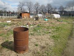 compostiere agli orti regolamentati 1