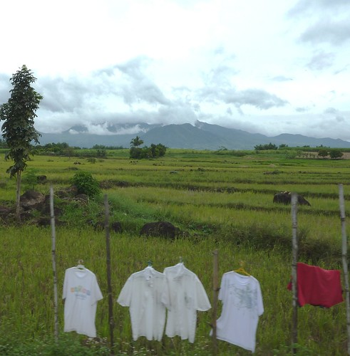 Negros-San Carlos-Bacolod (144)