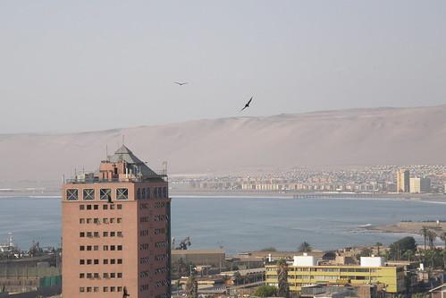 20100331048
