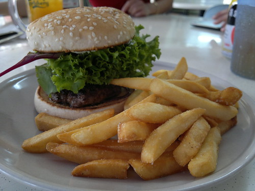 Plain Beef Burger 100g