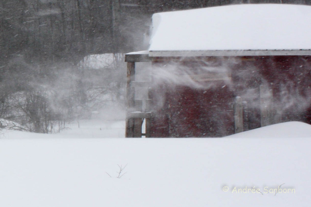 March 7, 2011 Storm (27 of 100).jpg