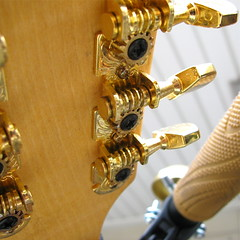 Mandolin Headstock
