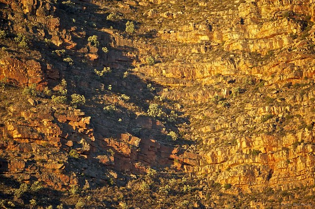 Sandstone sunset - Cederberg
