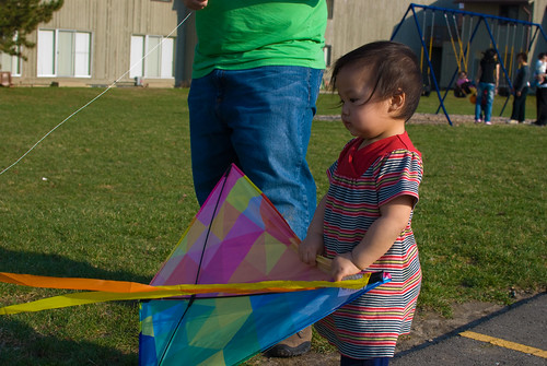 Watching the kite flutter