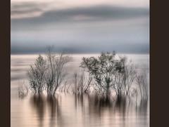 Ikebana (Sante sea) Tags: longexposure sky italy lake lago italia cielo anguillara bracciano esposizionelunga settembre2011challengewinnercontest