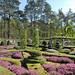 l'Arboretum des Grandes Bruyères (forêt d'Orléans)