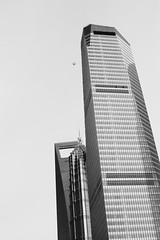 The Pack (andersdenkend) Tags: china blackandwhite bw bird architecture buildings airplane grey shanghai contemporary architektur flugzeug ifc offices jinmaotower hochhaus nikkor50mmf12 skyscryper nikond700