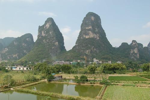 Vorne sind Reisfelder, die anscheinend ständig produzieren, einige sind erntereif, andere sind unter Wasser. Hinten zwei Karstberge, vor denen eine Hotelanlage gebaut wird.