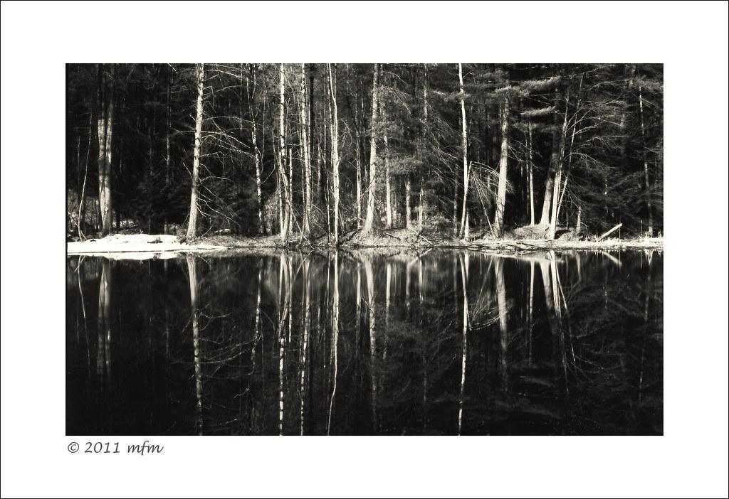 Tick Pond