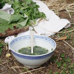 die Suppe