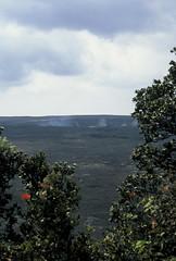 Hawaii Volcanoes National Park (malpractice) Tags: slr film 35mm canon island hawaii islands big fuji slide hawaiian 100 usm provia e6 eos3 2470mm f28l