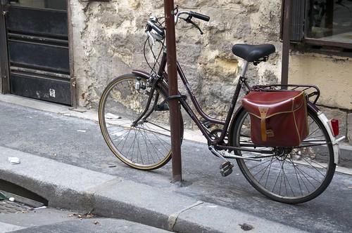Paris in Brown
