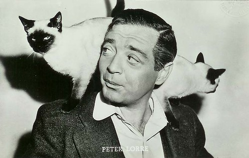 Peter Lorre loves cats