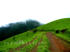 the road which leads to Kudajadri... (yedu kottakkal) Tags: road travel green fog hill hills journey karnataka kudajadri