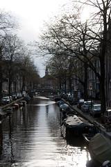 IMG_9233.jpg (Lluis Born) Tags: amsterdam nederland jordaan noordholland bloemgracht jordaanamsterdam bloemgrachtjordaanamsterdamnoordhollandnederland