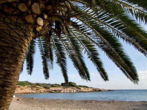 s'Estanyol-Ibiza-1