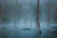 Blue Lagoon (Derek Chase Photography) Tags: naturepoetry