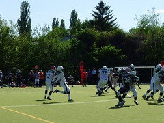 American Football Berlin