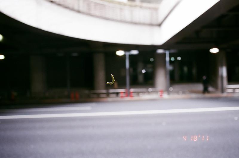 caterpillar_06