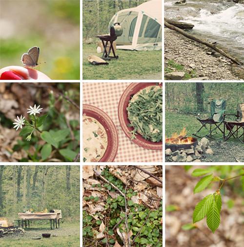 camping mosaic - apr 11