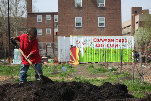 tending the Common Good City Farm (by: CGCF)