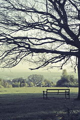 Stranded (Shakir's Photography) Tags: park uk tree green grass bench happy high play britain weekend hill oxford  shanko sabir shakir                thebestofday gnneniyisi