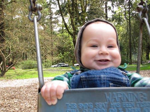 baby bumblebirch swing