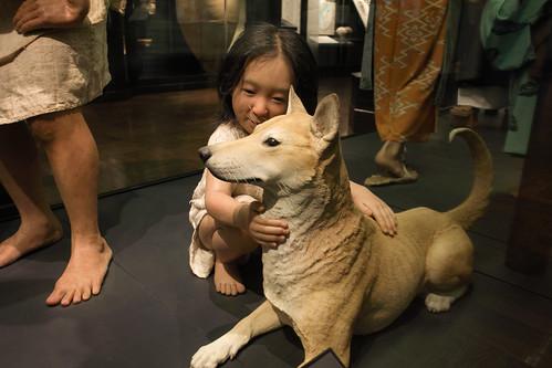 東京国立科学博物館