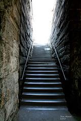 BROOKLIN BRIDGE STAIRS (Cool Photo by Jose Manuel Diaz) Tags: bridge usa canon stair escalera wow1 wow2 wow3 brooking mygearandme mygearandmepremium mygearandmebronze mygearandmesilver ringexcellence