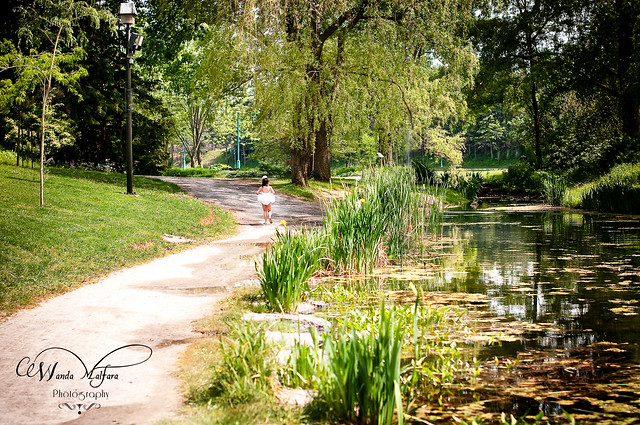 PhSho Park Dahlia 207 blog