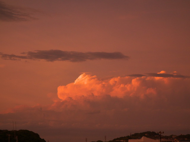 a doragon at dusk