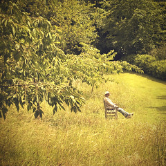 Sunworshipper (~ Meredith ~) Tags: uk summer man grass sunshine bench relax break seasons westsussex instant rest wildflowers sunlit arundel camerabag sunworship olympusepl1 utata:project=candid