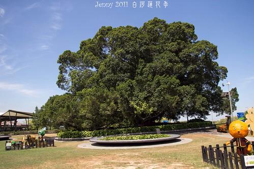 20110620白河蓮花季-5804