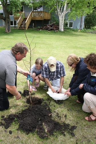 Valley City area office staff helped Cody Thibert and his daughter plant an apple tree they presented them in honor of Homeownership Month.  The Thibert's newly finished deck can be seen in the background.