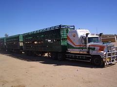 Orange Creeks triple (colesy88) Tags: orange station creek truck australia titan mack livestock roadtrain