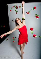 pretty dancer in a viel of red roses (tibchris) Tags: ballet woman cute sexy girl beautiful model ballerina pretty young sanjose dancer blonde russian campbell blackswan leggy strobe danceclass colorphotoaward arieldancestudio snapchris