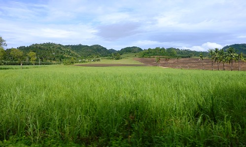 San Carlos-Dumaguete (47)