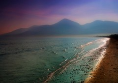 Purple Haze (RobIreland) Tags: ocean ireland sea summer mountains nature newcastle landscapes purple arts down have co mourne digitalcameraclub robireland